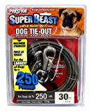 Prestige Super-Beast Dog Tie-Out, 30-Feet