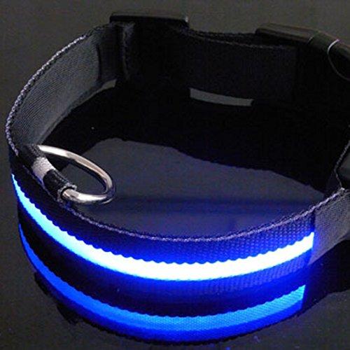 collier-de-chien-avec-thin-led-light-strip-flashing-light-up-glow-ssscuritss-rssglable-pratique-led-