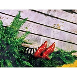 The Wizard Of Oz Wicked Witch Of The East Under House