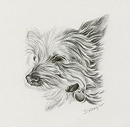 Custom Pet Portrait Graphite Drawing size 4 x 4
