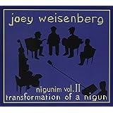 Joey's Nigunim 2: Transformation of Nigun