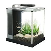 Fluval Spec Aquarium 10L Black