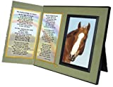 Rainbow Bridge Poem for Horses Sympathy Picture Frame Gift and Memorial Keepsake, Sage Green with Foil Accent