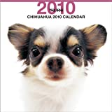 THE DOG チワワ 2010年 カレンダー