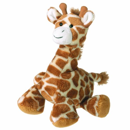 Just One Year Giraffe