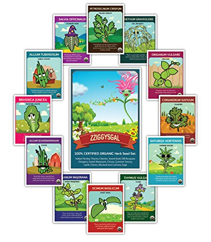 100-certified-organic-12-herb-set-popular-varieties-of-easy-to-grow-seeds-usda-certified-seed-compan