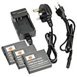 DSTE® (3-pack) NP-BG1 Rechargeable Li-ion Battery + Charger DC02U for Sony NP-BG1, NP-FG1 and Sony Cyber-shot DSC-H3, DSC-H7, DSC-H9, DSC-H10, DSC-H20, DSC-H50, DSC-H55, DSC-H70, DSC-H90, DSC-HX5V, DSC-HX7V, DSC-HX9V, DSC-HX10V, DSC-HX20V, DSC-HX30V, DSC