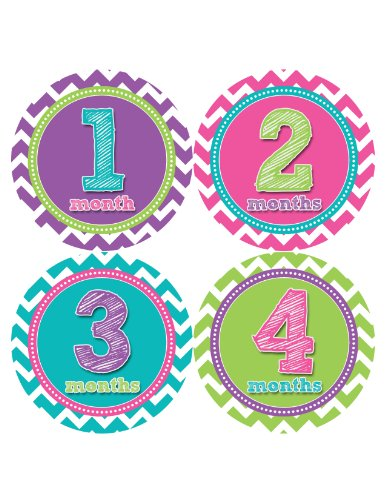 Months In Motion 284 Monthly Baby Stickers Baby Girl Months 1-12 Milestone