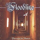 Passage to Dawn by Floodline