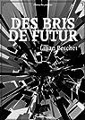 Des bris de futur (version intégrale)