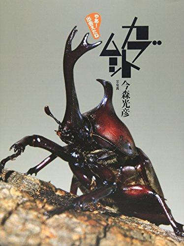 カブトムシ (やあ! 出会えたね 6)