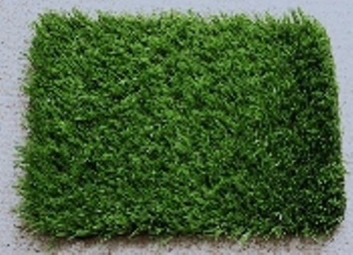 Potty Training Grass