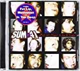 Sum 41 All Killer No Filler - Sum 41 CD