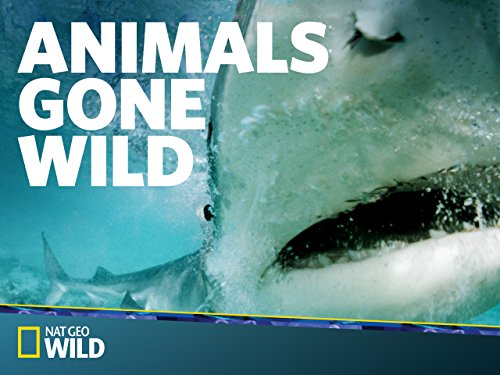 Animals Gone Wild Season 1