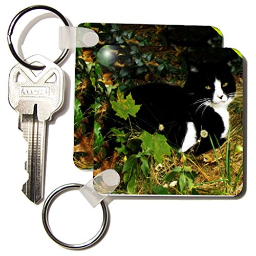 Kc_185397_1 Renderly Yours Cats - Black And White Car Hiding In Trees - Key Chains - Set Of 2 Key Chains