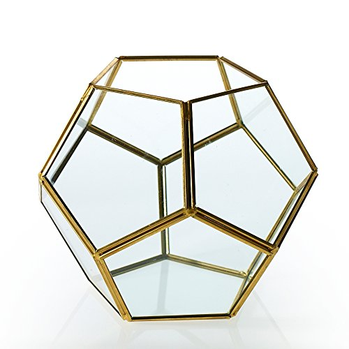 Terrarium Glass Display Box, Industrial Geometric Dodecahedron, Clear Glass Candle Holder, 6 inch, Modern Garden Chic Wedding Decor, Succulents & Air Plants Holder, Venue Centerpiece, (Gold), (2 Pack)