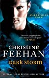 Dark Storm: Number 23 in series ('Dark' Carpathian)