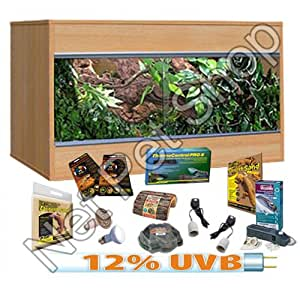 Bearded Dragon Starter Kit With 36