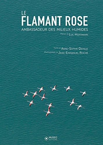 Le flamant rose : Ambassadeur des milieux humides