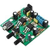 10W Stereo Audio Amplifier (Assembled Module)