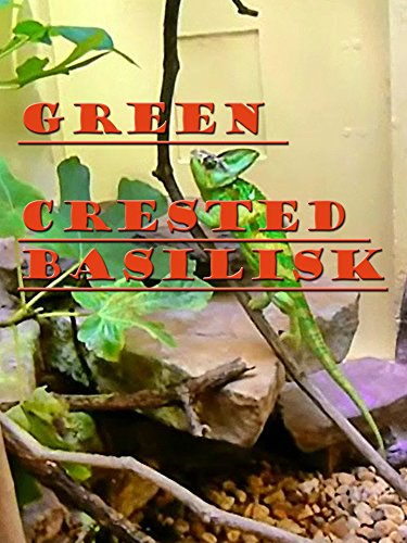 Clip: Green Crested Basilisk on Amazon Prime Instant Video UK