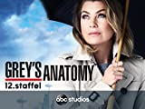 Grey's Anatomy - Staffel 12 [dt./OV]