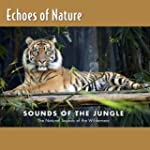 Jungle Talk  Echoes Of Nature