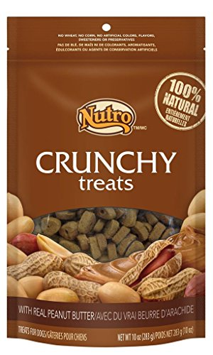 NUTRO Crunchy Treats With Real Peanut Butter - 10 oz. (283 g) (Nutro Natural Choice Dog Treats compare prices)