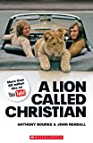Anthony Bourke A Lion Called Christian book only (Scholastic Readers)