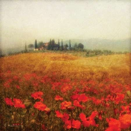 feeling-at-home-art-print-x-frame-picture-fine-art-print-tuscan-poppies-81-x-81-cm