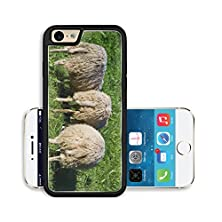 buy Liili Premium Apple Iphone 6 Iphone 6S Aluminum Snap Case Three Sheep Grazing On A Lush Meadow Image Id 13140104