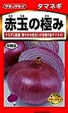 タキイ種苗たまねぎ 赤玉の極み