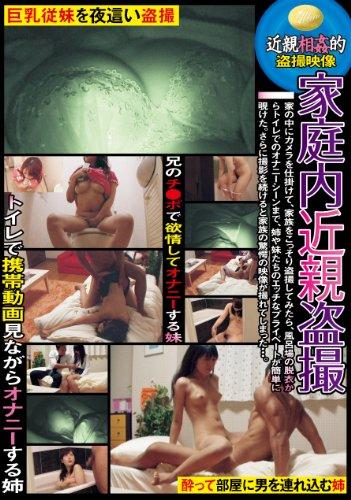 家庭内近親盗撮 [DVD]