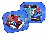 Spiderman 10010