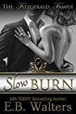 Slow Burn (Contemporary, sexy novel) (The Fitzgerald Family Book 1)