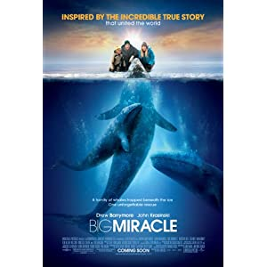 51tu8dxjhEL. SL500 AA300  DVD round up   week of June 18, 2012: Big Miracle, Project X, Sarah Silverman Program, Seeking Justice, Wanderlust