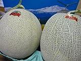 北海道産 訳あり 赤肉じゃんぼメロン大玉2kg×2玉入