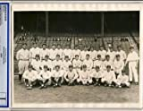 1927 New York Yankees Type 1 Photo Psa/dna Ruth, Gehrig - MLB Photos