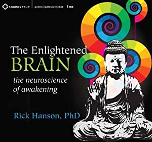 the enlightened brain the neuroscience of awakening rick