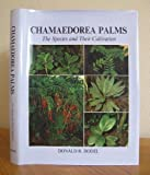 img - for Chamaedorea Palms the Species and Their Cultivation by Donald R. Hodel book / textbook / text book