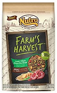 The Nutro Company Farm's Harvest Adult Lamb and Whole Brown Rice Recipe, 24-Pound