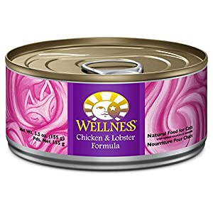 Wellness Complete Health Chicken & Lobster Natural Wet Canned Cat Food