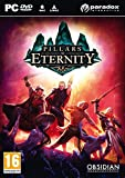 Pillars of Eternity - édition hero
