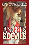 img - for Angels And Devils book / textbook / text book