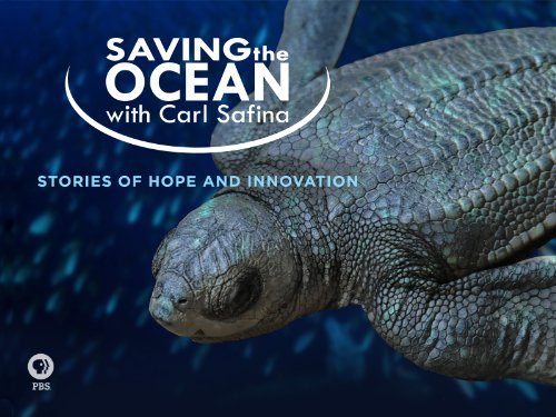 Saving the Ocean with Carl Safina Season 1