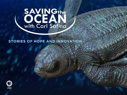 Saving the Ocean with Carl Safina Season 1