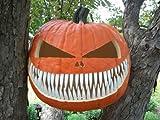 Halloween Pumpkin Carving Kit - Pumpkin Teeth for your Jack O' Lantern - Set of 18 Metal Fang Teeth