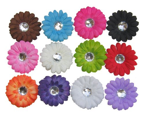The Trendy Turtle - 12 Assorted Small Gerber Daisy Flower Hair Clip Bows for Infant Baby to Toddlers to Youth Girls - Great to use as hair clips or attach to headband or beanie