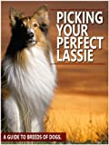 Picking Your Perfect Lassie: A guide to breeds of dogs