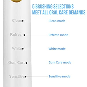 Sonic Toothbrush, LANDWIND Electric Toothbrush with 5 Brushing Heads, USB Charging, Smart Timer, 4 Charges for 1 Year, 5 Modes, IPX7 Waterproof for Unisex Adults (White) (Color: Electric Toothbrush with 5 Brush Heads-White)